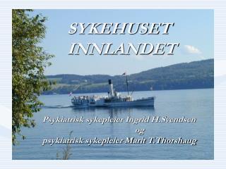 Bilde av Skibladner på Mjøsa