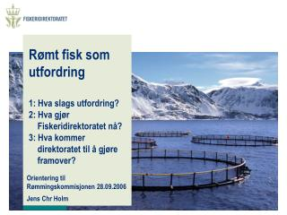 Orientering til Rømmingskommisjonen 28.09.2006 Jens Chr Holm