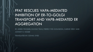 What Is VAP