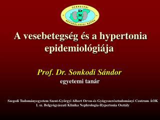 A vesebetegs g  s a hypertonia epidemiol gi ja