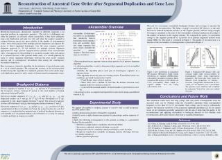 Reconstruction of Ancestral Gene Order after Segmental Duplication and Gene Loss