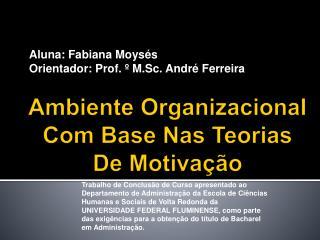 Ambiente Organizacional Com Base Nas Teorias De Motivação