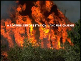 WILDFIRES, DEFORESTATION, LAND USE CHANGE