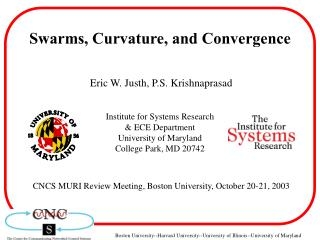 Swarms, Curvature, and Convergence