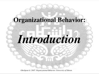 Organizational Behavior: Introduction