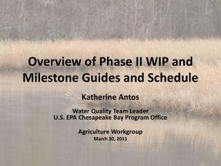 Overview of Phase II WIP and  Milestone Guides and Schedule