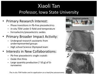 Xiaoli Tan Professor, Iowa State University