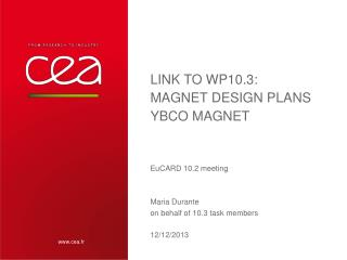 Link to WP10.3:  magnet  design  plans YBCO MAGNET