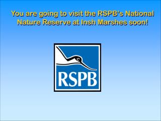 You are going to visit the RSPB's National    Nature Reserve at Insh Marshes soon!