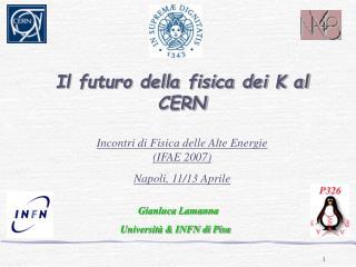 Il futuro della fisica dei K al CERN