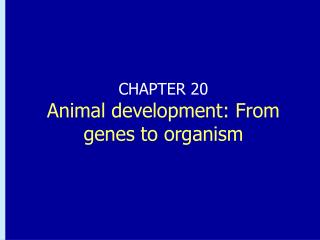 CHAPTER 20 Animal development: From genes to organism