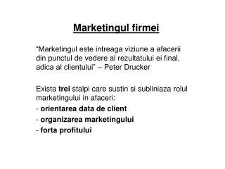 Marketingul firmei
