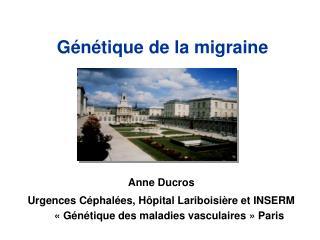 Génétique de la migraine