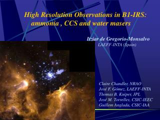 High Resolution Observations in B1-IRS:     ammonia , CCS and water masers