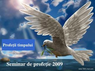 Seminar de profe ţ ie 2009