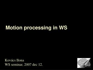 Motion processing in WS