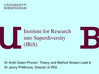 Institute for Research into Superdiversity (IRiS)