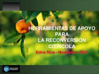 HERRAMIENTAS DE APOYO PARA  LA RECONVERSIÓN CITRICOLA