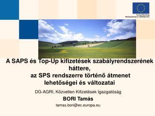 A SAPS  s Top-Up kifizet sek szab lyrendszer nek h ttere,  az SPS rendszerre t rt no  tmenet  lehetos gei  s v ltozatai