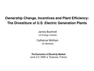 Ownership Change, Incentives and Plant Efficiency:
