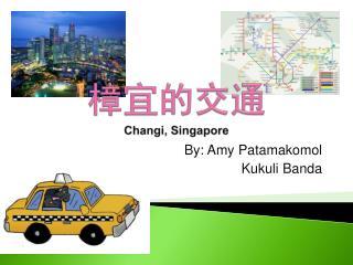 樟宜的交通 Changi , Singapore