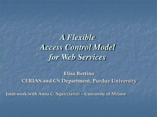 A Flexible Access Control Model  for Web Services