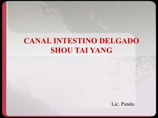 CANAL INTESTINO DELGADO SHOU TAI YANG