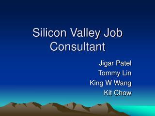 Silicon Valley Job Consultant