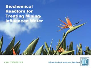 Biochemical Reactors for Treating Mining-influenced Water
