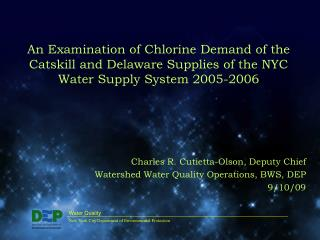 An Examination of Chlorine Demand of the Catskill and Delaware Supplies of the NYC Water Supply System 2005-2006