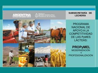 PROGRAMA NACIONAL DE APOYO A LA COMPETITIVIDAD DE LAS  PyMES  LÁCTEAS: PROPyMEL MODERNIZACIÓN