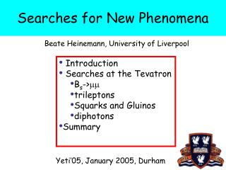 Searches for New Phenomena