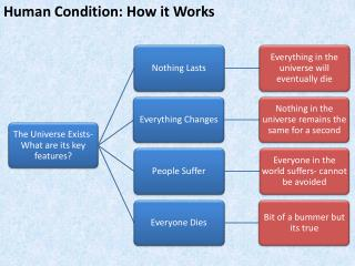 Human Condition: How it Works