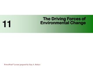 The Driving Forces of                                  Environmental Change