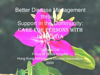 Better Disease Management through Support in the Community: Care for Persons with Dementia
