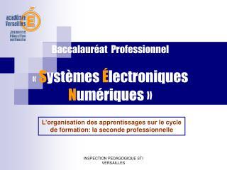 Baccalauréat  Professionnel « S ystèmes  É lectroniques  N umériques»