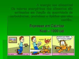 Expressa em Calorias  Kcal = 1000 cal