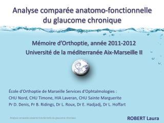 Analyse comparée anatomo-fonctionnelle du glaucome chronique