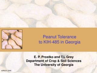 Peanut Tolerance  to KIH-485 in Georgia