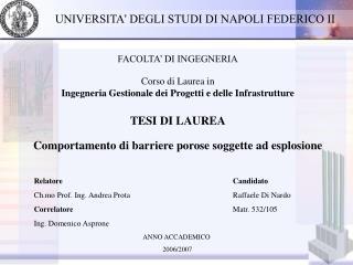 Relatore Ch.mo Prof. Ing. Andrea Prota Correlatore Ing. Domenico Asprone
