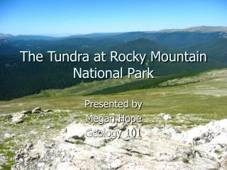 The Tundra at Rocky Mountain National Park