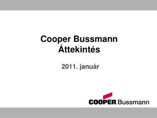 Cooper Bussmann  Áttekintés