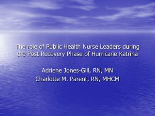 The role of Public Health Nurse Leaders during the Post Recovery Phase of Hurricane Katrina