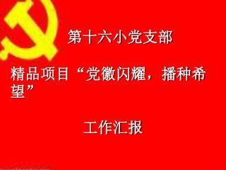 """第十六小党支部 精品项目""""党徽闪耀,播种希望""""                       工作汇报"""