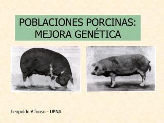 POBLACIONES PORCINAS: MEJORA GENÉTICA