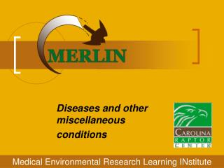 Diseases and other miscellaneous  conditions