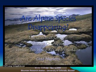 Are Alpine Species Disappearing?