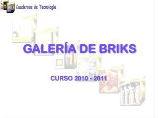 GALERÍA DE BRIKS