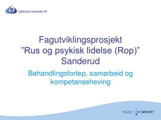 "Fagutviklingsprosjekt ""Rus og psykisk lidelse (Rop)"" Sanderud"