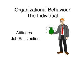 Organizational Behaviour The Individual